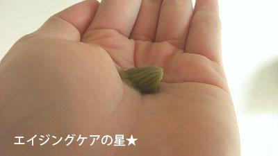 [ラナーナ]海藻 海泥トリートメントの口コミ