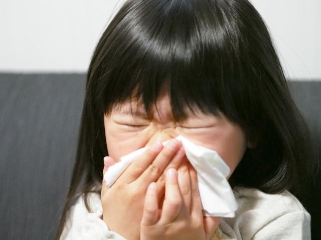 子供の花粉対策には「お茶」がおすすめ!