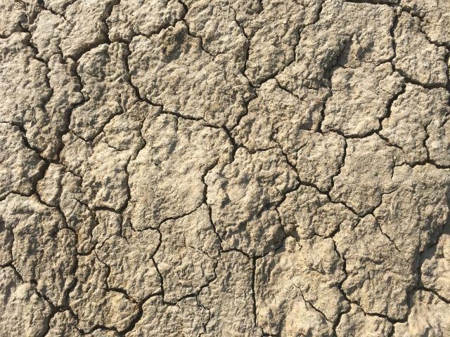 エアコン(冷房・暖房)で、肌が乾燥。「ピリピリ」「かゆみ」など肌荒れが。おすすめのスキンケアは?